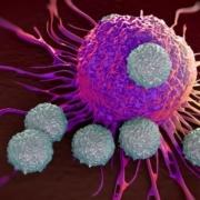 ESMO 2016 atezolizumab data medipaper medical communications